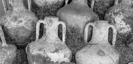 8000 jaar genieten van wijn